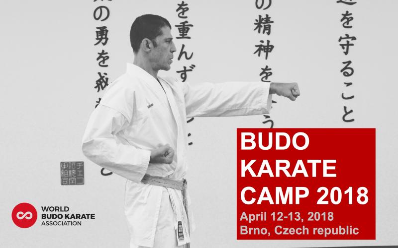 budo-karate-kemp-2018-poster